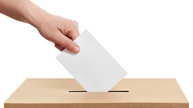 záruky volebního práva