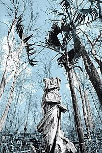 hřbitov vagankovo hřbitov fotografie