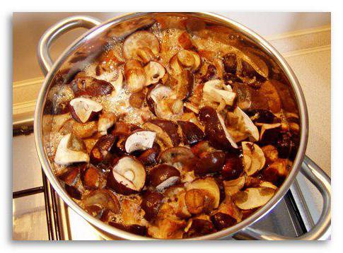 recepti za gljive