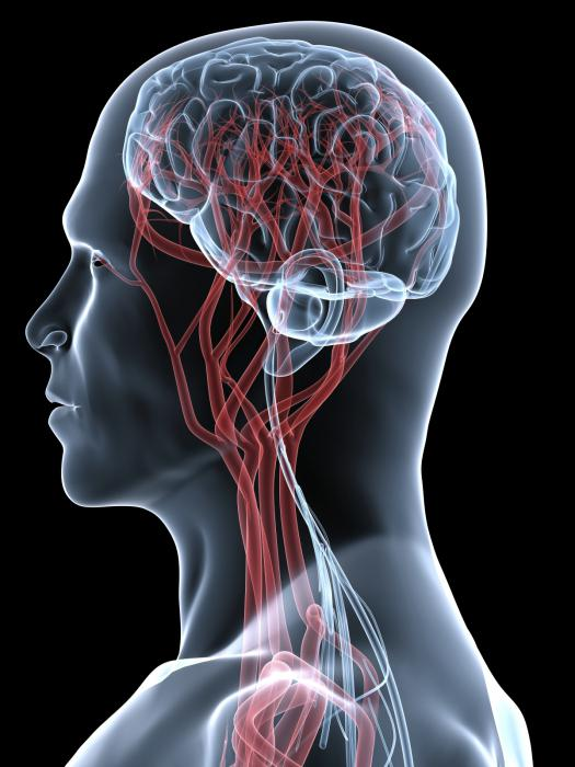 stenosi vascolare