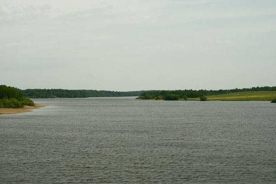 Basi di pesca del bacino di Vazuzskoe