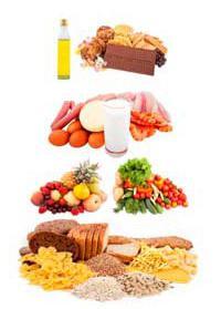 dieta vegetariana a base di latte