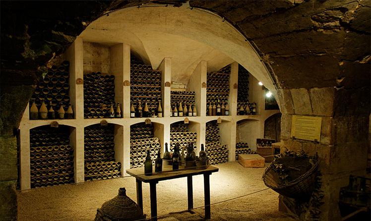 Piwnica z winem w Lesie Wiedeńskim