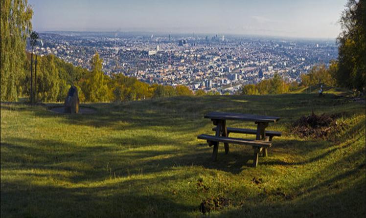 Widok z tarasu widokowego Lasów Wiedeńskich
