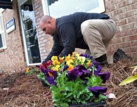 cura di fiori viola