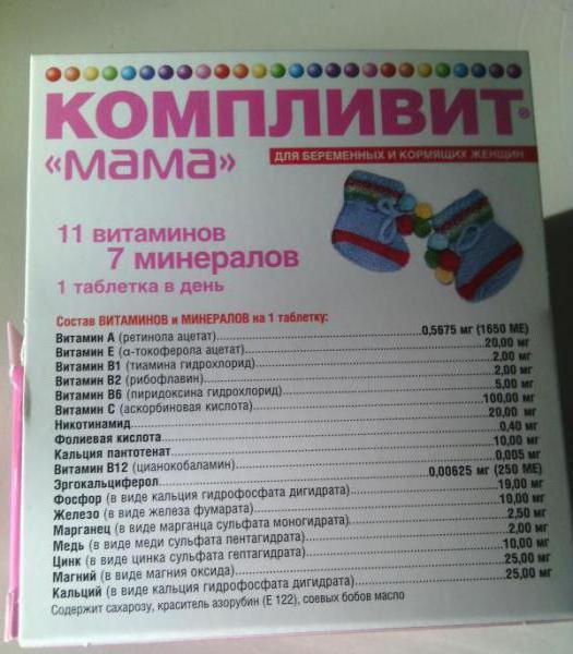Recensione della madre Komplevit