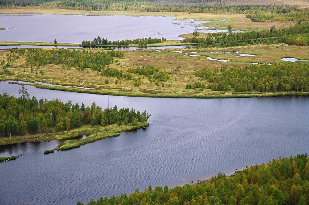 VODLOZERSKY park Pudozhsky upravno okrožje