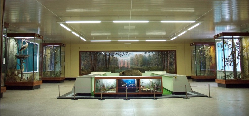 Muzej narave
