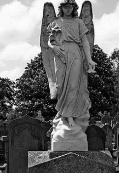 гробище на востряковското