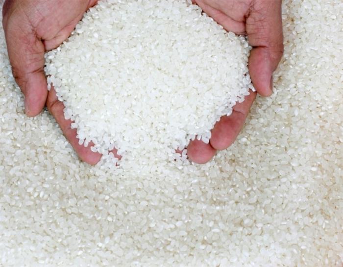 come far bollire il riso