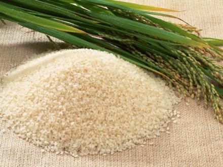cuocere il riso per il sushi