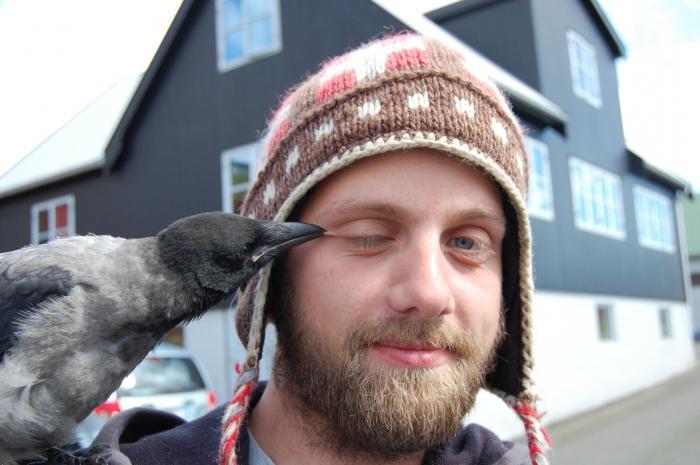 što sanja o vranama