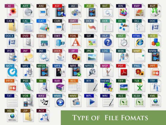 formate datoteka