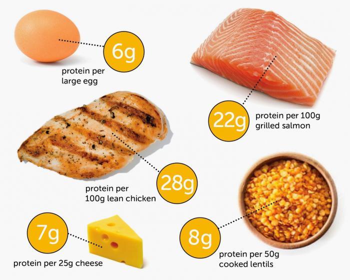 poškození proteinů
