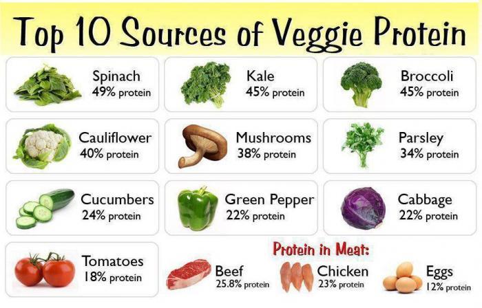 proteinové výhody