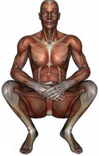 оптимална поза за урологичен масаж