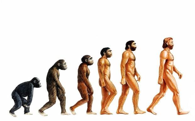 gonilne sile evolucije