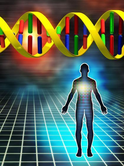 Co jsou geny
