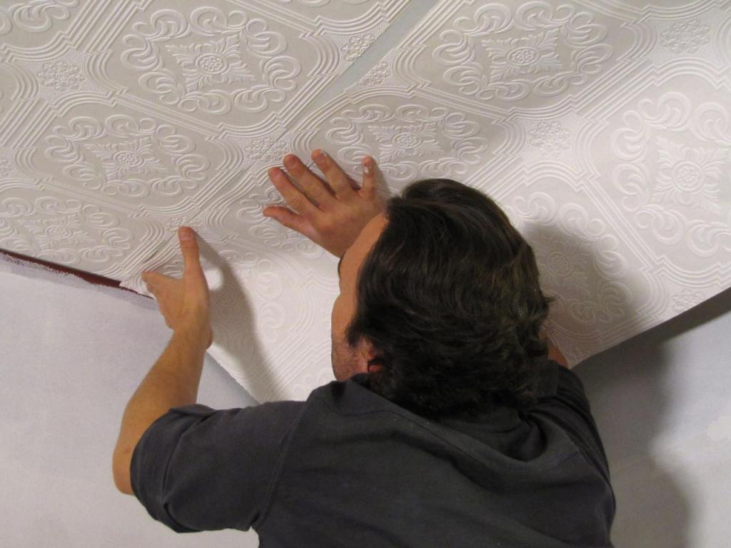 vrste fotografij stropov