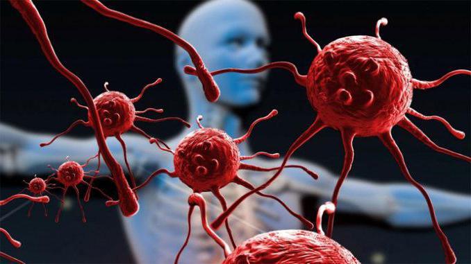 jaké buňky virus pomáhá