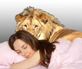 за какво мечтаят лъвовете