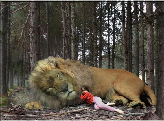 какво мечтаят лъвовете за жените