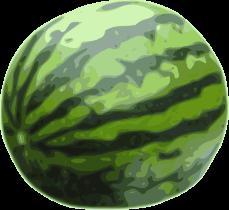 što sanja o lubenicama