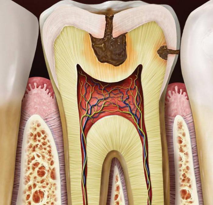 како одржавати зубе здравим