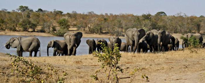 природни резервати и национални паркове