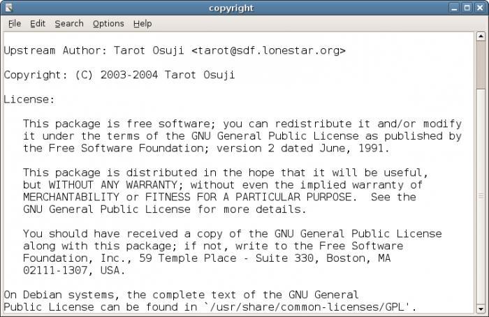 informatica per word processor