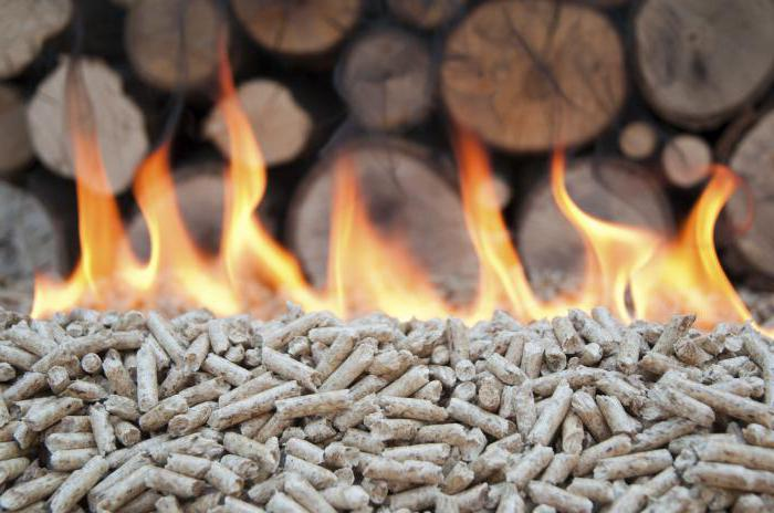 biomasa organizama