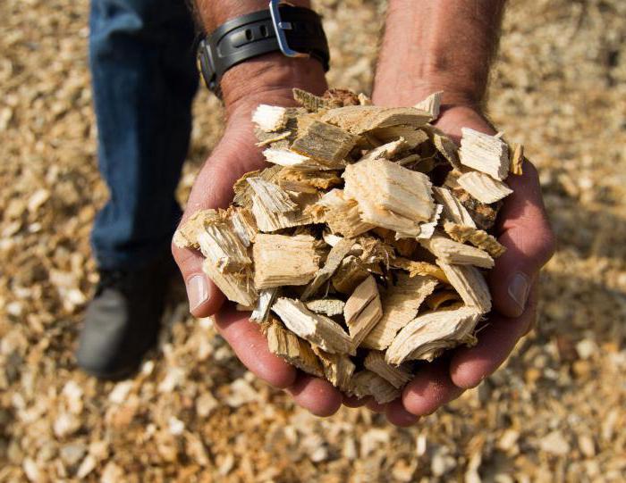 značenje riječi iz biomase