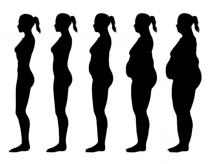 индекс на телесна маса