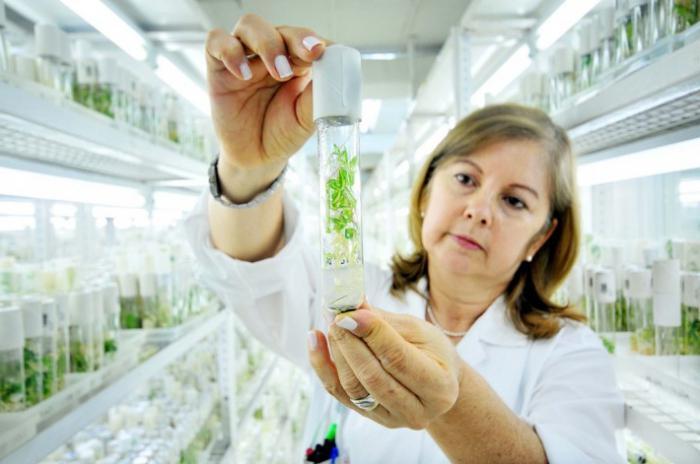 metodi di ingegneria genica e cellulare