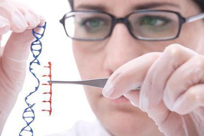 inženjerstvo životinjskih stanica