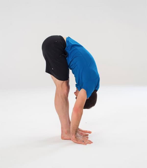 elastyczność fizyczna