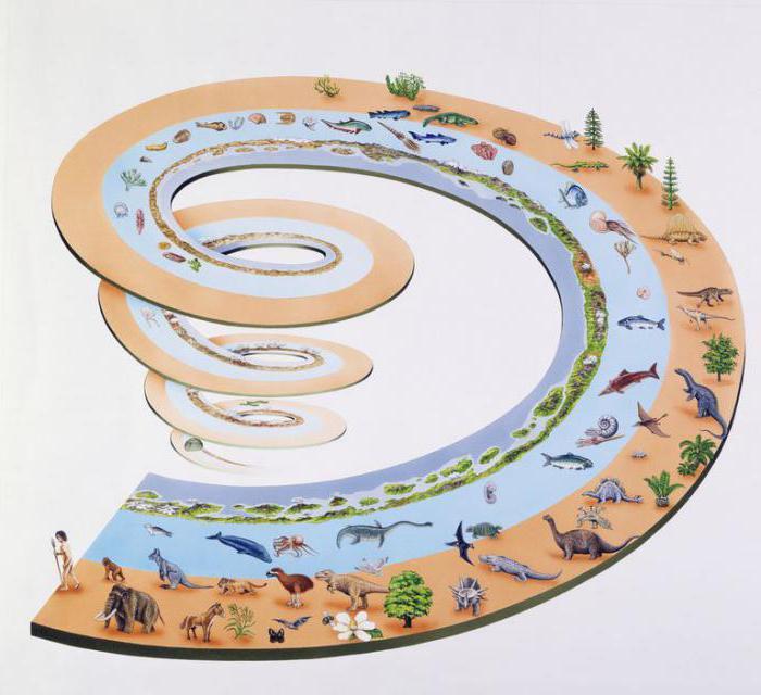 mikroevolucija i makroevolucija