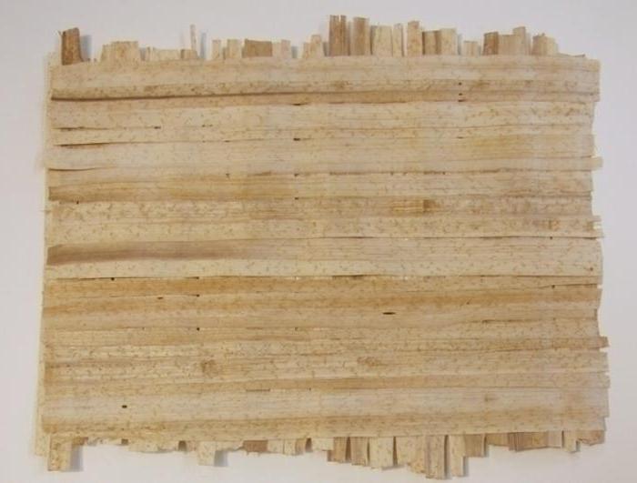 storia del papiro