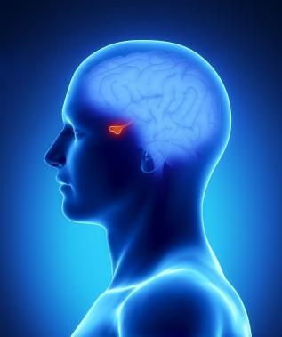 uzroci hipofiznog adenoma