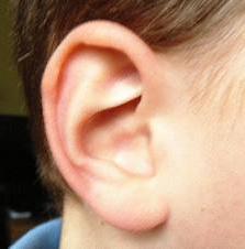 malattia dell'orecchio