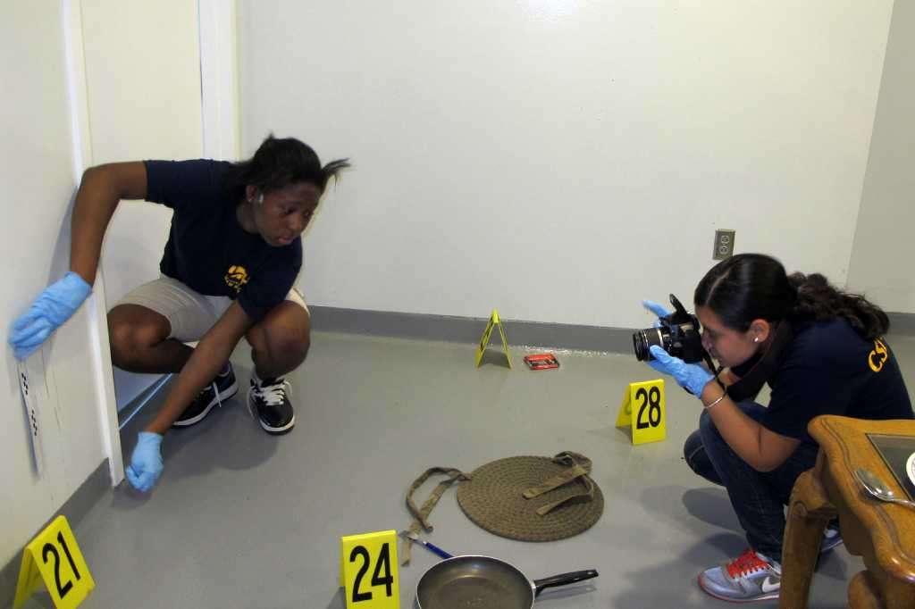 Pregled mjesta zločina