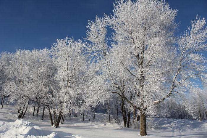 kaj je razlika mraz in rosenje