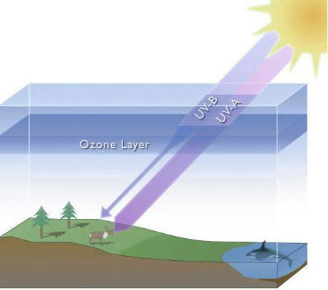 problema di ozono