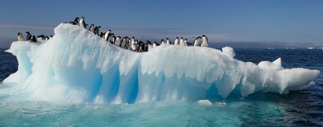 Circolo polare artico meridionale