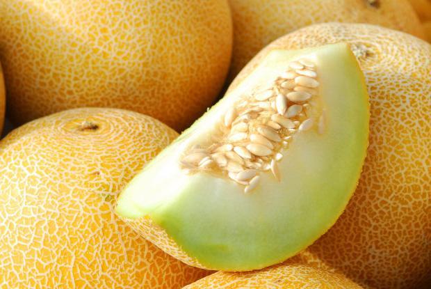 proprietà utili melone
