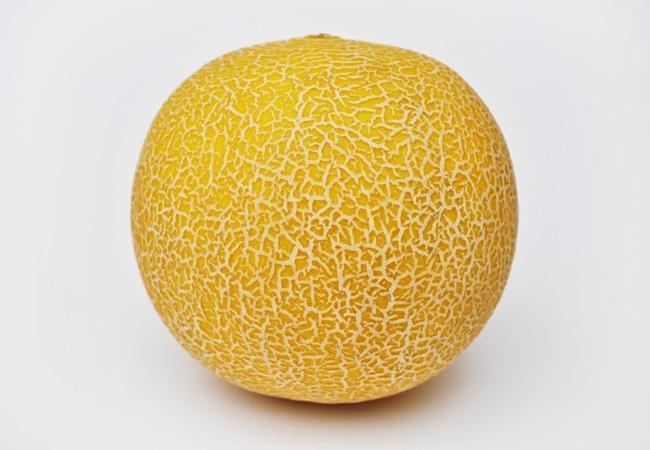 l'uso del melone