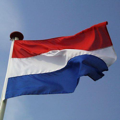 какъв език се говори в Холандия