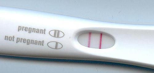 quale test è meglio determinare la gravidanza