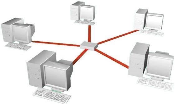 Видове локални компютърни мрежи