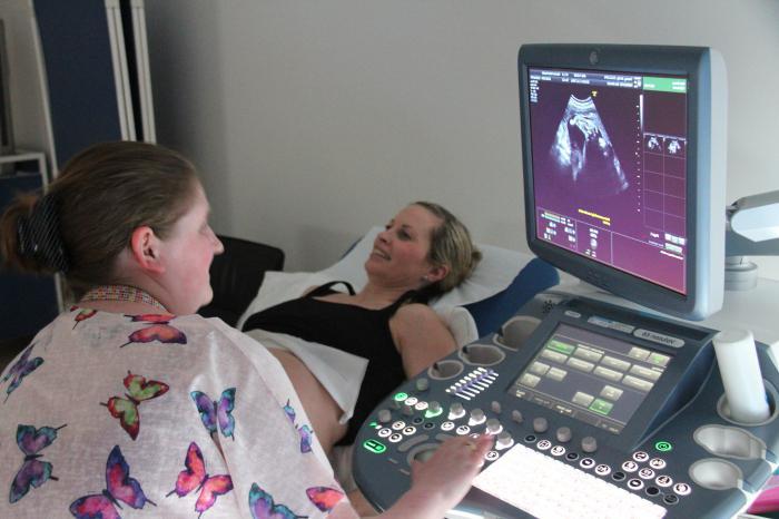 ecografia durante la gravidanza spesso
